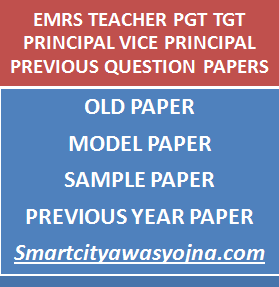emrs pgt tgt previous papers